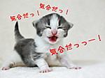 Blog_1706142_2